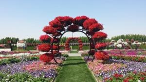 Дубайский сад