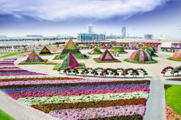 сад в Дубае