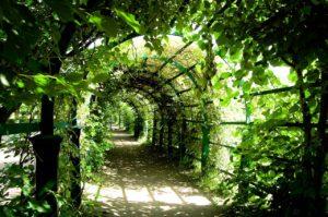 Летний сад - арка
